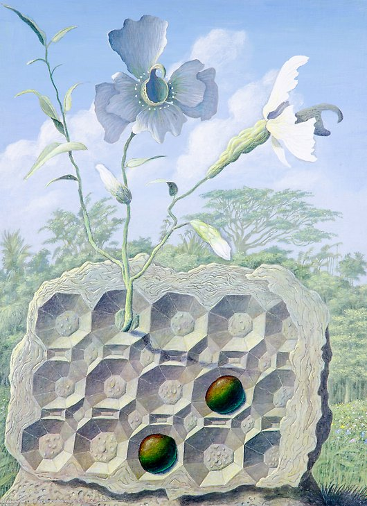Den Structure with Eggs of Leucognathus Viridis  1974  acrylic on canvas  467 x 635 mm